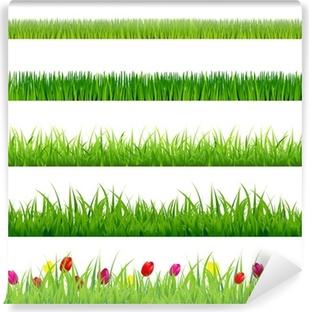 Papier peint lavable Big Grass verte et de fleurs Set