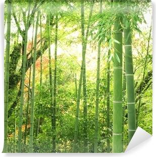 Papier Peint Lavable Forêt de bambous