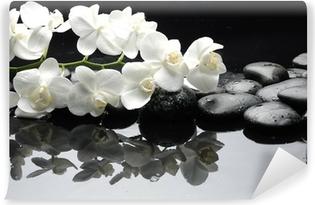 Papier peint lavable Gros plan orchidée blanche avec de l'eau en pierre tombe