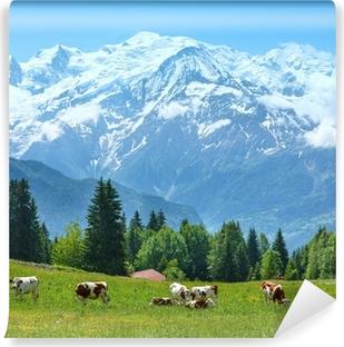 Papier peint lavable Troupeau de vaches sur la clairière et le Mont Blanc vue du massif de montagne