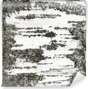 papiers peints tronc de bouleau pixers nous vivons. Black Bedroom Furniture Sets. Home Design Ideas