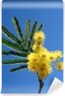 Papier peint vinyle Mimosa