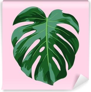 Papier peint vinyle Monstera illustration de feuille tropicale