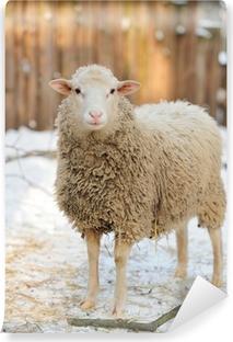 Papier peint vinyle Mouton