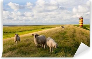 Papier peint vinyle Moutons sur Pilsumer Phare - Mer du Nord
