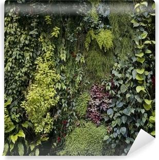 Papiers Peints Mur Vegetal Pixers Nous Vivons Pour Changer