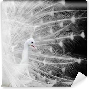 Papier peint vinyle Paon blanc