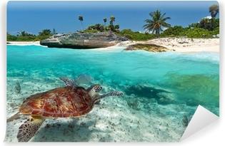 Papier peint vinyle Paysage mer des Caraïbes avec la tortue verte au Mexique