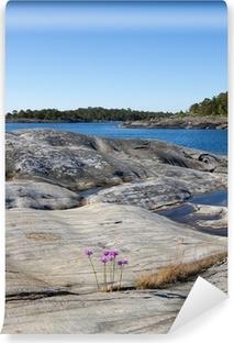 Papier peint vinyle Paysage rocheux dans l'archipel de Stockholm.