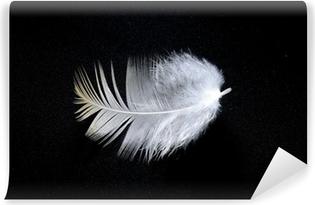 Papier peint vinyle Plume blanche