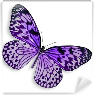 Papier Peint Vinyle Purple Butterfly volant