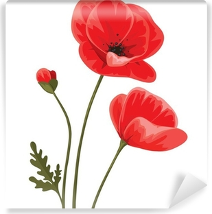 Papier peint vinyle Red poppies