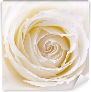 Papiers peints coeur rose pale pixers nous vivons - Papier peint rose pale ...