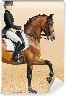 Papier peint vinyle Sport équestre - dressage, closeup