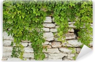papiers peints paysage avec verdure pixers nous vivons pour changer. Black Bedroom Furniture Sets. Home Design Ideas