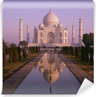 Papier Peint Vinyle Taj Mahal