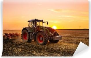 Papier peint vinyle Tracteur sur le terrain de l'orge par le coucher du soleil.