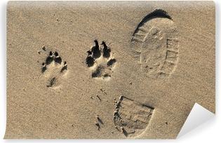 Papier peint vinyle Une empreinte de patte de chien impressions et dans le sable sur ab