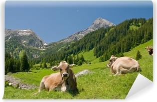 Papier peint vinyle Vaches heureuses