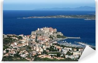 Papier peint vinyle Ville de Calvi, Balagne, Corse, Corse
