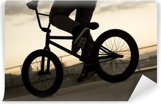Papier peint vinyle Vintage Bicycle