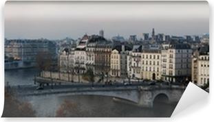 Poster Vue Panoramique Sur Les Toits De Paris Pixers Nous