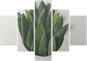 Pentáptico Arranjo mínimo criativo de folhas verdes. conceito de natureza. Lay plana.