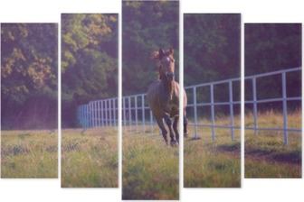 Brown horse galloping on the trees background along white fence at the summer Pentaptych