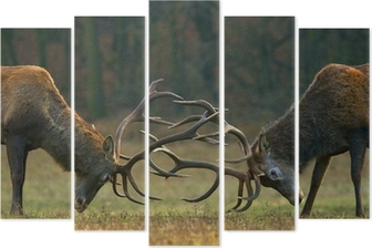 Red deer fight Pentaptych