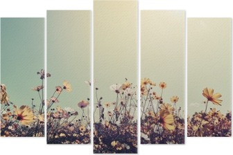 Vintage landscape nature background of beautiful cosmos flower field on sky with sunlight. retro color tone filter effect Pentaptych