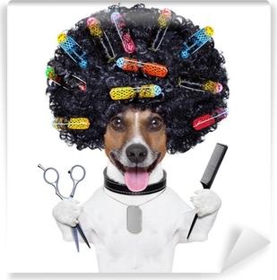 Kampaamo koira, jossa curlers Pesunkestävä Valokuvatapetti