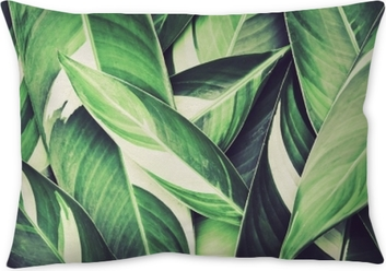 Fresh tropical Green leaves background Pillow Cover