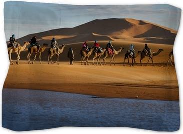 Caravan of tourists passing desert lake on camels