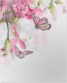 Plakat Bukett med hvite og rosa roser, sommerfugl. Blomster bakgrunn.