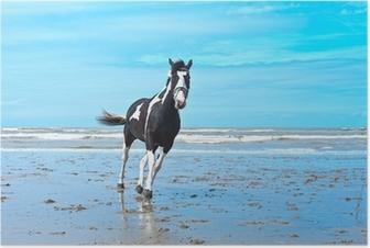 Plakat Hest