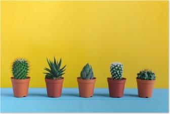 Kaktus på skrivebordet med gul wal Plakat