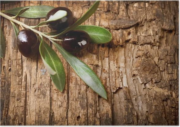cae7a4a46 Plakat Olive Branch over Wood bakgrunn