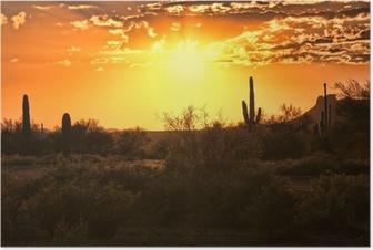 Smuk solnedgang udsigt over Arizona ørkenen med kaktus Plakat