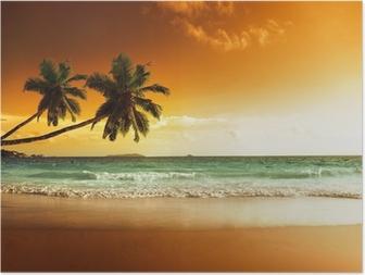Solnedgang på stranden af Caribiske Hav Plakat