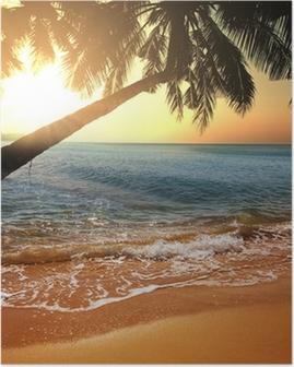 Plakat Tropisk strand