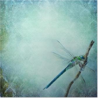 Plakat Vintage shabby chic bakgrunn med dragonfly