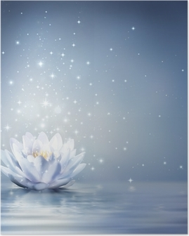 Plakat Waterlily lyseblå på vann - eventyr bakgrunn