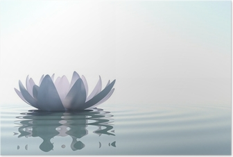 Plakat Zen blomst loto i vann