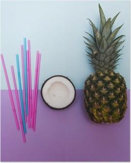 Plakát Ananas a polovina z kokosu pro stranu s stébla v pastelových