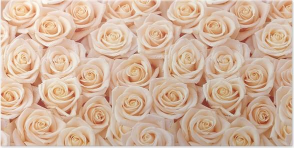 Plakát Béžová růže bezešvé vzor - Pozadí