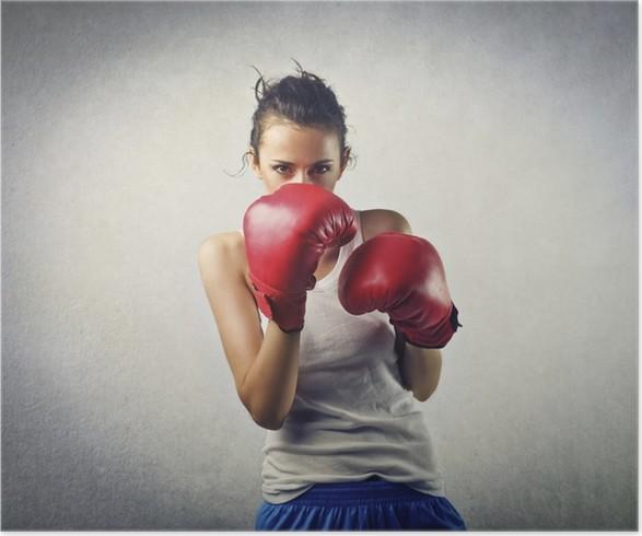 Plakát Boxer - Témata