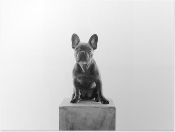 Plakát Französische Bulldogge als Socha - Zvířata