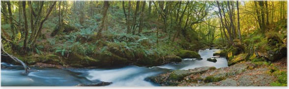 Plakát Golitha Falls Cornwall - Jiné
