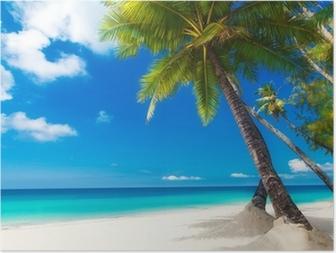 Plakát HD Dream scénu. Krásné palmy na pláži s bílým pískem. Letní n