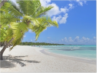 Plakát HD Palmy a tropické pláži